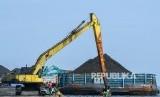 Bongkar muat batu bara di Marunda, Jakarta Utara, Jumat (15/11). Direktur Utama MIND ID (holding tambang BUMN) Orias Petrus Moedak menegaskan tidak akan segan-segan akan mencopot pimpinan perusahaan yang tidak bisa mencapai target yang sudah diberikan.