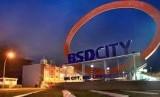 BSD City.