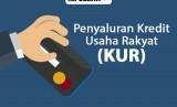 Data penyaluran kredit usaha rakyat