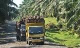 Dua unit truk melintas di Sumatra Barat