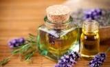 'Essential oil' bisa jadi pilihan untuk ringankan gejala sakit pada anak (Foto: ilustrasi essential oil)