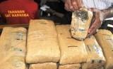Polres Kota Pariaman, Sumatera Barat menangkap dua tersangka kurir ganja kering. (ilustrasi)
