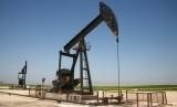Harga minyak mentah Indonesia (ICP). (ilustrasi).