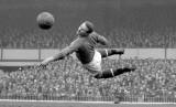 Harry Gregg sewaktu membela Manchester United.