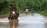 Ilustrasi banjir.