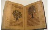 Ilustrasi kitab botani Islam