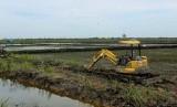 Ilustrasi pembukaan lahan baru untuk sawah. Dok: Pribadi