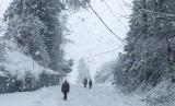 Jalanan yang tertutup salju tebal di Olympia, Washington, Senin (11/2). Badai salju menghantam mulai dari Washington, bahkan hingga Hawaii.