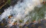Kabakaran hutan dan lahan.