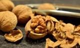 Kacang kenari bisa menjadi pilihan camilan yang tepat (Kacang Kenari)