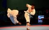 Karateka Indonesia (ilustrasi)
