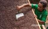 Kelompok Tani Karya Bakti II menjemur biji kopi robusta dengan metode Wine dari lahan organik perkebunan kopi rakyat lereng Gunung Kelir di Desa Brongkol, Jambu, Kabupaten Semarang, Jawa Tengah, Senin (27/8). Harga jual biji kopi organik itu mengalami kenaikan dari Rp22.500 menjadi Rp40.000 - Rp65.000 per kilogram