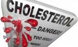 Kolesterol (Ilustrasi)