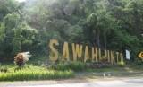 Kota Sawahlunto, Sumatera Barat