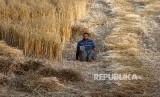 Louy Al-Najar kehilangan kedua kakinya karena terkena tembakan rudal Israel 9 tahun lalu.