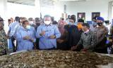 Menteri Kelautan dan Perikanan Edhy Prabowo bersama Bupati Pandeglang Irna Narulita melakukan panen udang vaname di tambak udang di kawasan Perairan Desa Ujung Jaya, Kecamatan Sumur, Selasa (11/8).
