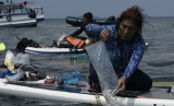 MenteriKelautan dan Perikanan, Susi Pudjiastuti melepasliarkan benih lobster hasil penggagalan penyelundupan ke Singapura, di perairan pulau Cemara, Kepulauan Karimunjawa, Jumat (12/4). Sebanyak 69 ribu benih lobster dilepasliarkan dalam kesempatan ini.