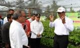 Menteri Pertanian Andi Amran Sulaiman memberikan arahan tentang perkembangan sektor perkebunan