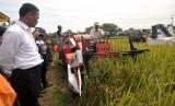 Menteri Pertanian Andi Amran Sulaiman memperhatikan proses panen padi menggunakan mesin Combine Harvester saat panen raya di Desa Babadan, Tegal, Jawa Tengah, Kamis (31/3).