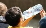 Orang yang hanya meminum air botol kemasan setiap hari bisa tanpa sadar mengonsumsi 90 ribu mikroplastik per tahun. (Ilustrasi)