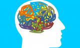 Otak manusia (Ilustrasi)