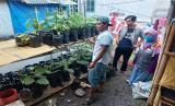 Pada akhir Juli 2020, Rumah Zakat menyalurkan bantuan benih kepada pemuda yang ada di Kampung Sindang Asih RT 04 RW 11 Kelurahan Mangkubumi, Kecamatan Mangkubumi.