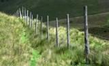 Sulbar Minta Pusat Bahas Masalah Perbatasan dengan Sulteng