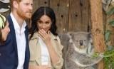 Pangeran Harry dan Meghan Markle melihat seekor koala yang di Taronga Zoo, Sydney, Selasa (16/10). Pasangan kerajaan Inggris sedang berada di Australia untuk kunjungan resmi.