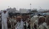 Pasar hewan Kakiyah yang berjarak 10 kilometer dari Kota Makkah menjual hewan untuk membayar dam. Di tempat ini, jamaah haji bisa memilih dan melihat langsung penyembelihan hewan untuk membayar dam.