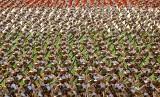 Pasukan militer elite Iran, Garda Revolusi Iran (IRGC).