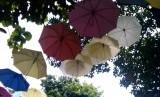 payung-payung menjadi dekorasi taman (ilustrasi)