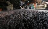 Pekerja memasak kopi jenis robusta secara tradisional. Ilustrasi