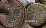 Pekerja memilah biji kopi (green bean) arabika. Pemerintah menargetkan pada tahun 2018 Indonesia menjadi produsen kopi terbesar dunia.