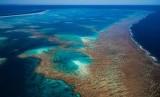 Pemandangan Great Barrier Reef dari atas langit. Polusi yang semakin bertambah di gugusan terumbu karang Great Barrier Reef, Australia, mengancam keberlangsungan hidup lumba-lumba di sekitar area tersebut.