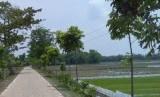 Pembangunan jalan desa / Ilustrasi