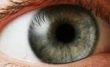 Pemilik mata minus tinggi disarankan memeriksa retinanya tiap enam bulan sekali. Ilustrasi