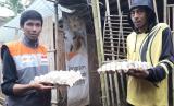 Penerima manfaat program ekonomi Rumah Zakat di Desa Berdaya Tempuran Kecamatan Kaloran berhasil merambah kepada usaha yang lebih luas yaitu memasarkan telur bebek kepada para pedagang martabak di wilayah Kecamatan Kaloran.