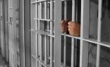 Pemerintah berencana membebaskan 30 ribu narapidana karena pandemi virus corona.