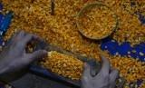 Perajin membuat tempe berbahan baku kedelai impor di kampung Sukamaju, Tasikmalaya, Jawa Barat, Senin (16/7).