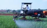 Kinerja Mentan Syahrul Yasin Limpo di masa awal jabatannya dengan mendata lahan pertanian di Indonesia mendapat apresiasi DPR. Pertanian Indonesia. (Ilustrasi)