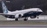 Pesawat jenis Boeing 737 (ilustrasi)