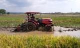 Petani sedang menggarap lahan (ilustrasi).