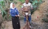 Peternak kambing Desa Tlagasana, kelompok Tlaha Mulyo binaan Rumah Zakat.