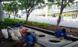 Pembangunan 1,8 Juta Sumur Resapan di DKI Butuh Waktu