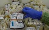 Petugas merapikan labu darah dari pendonor (Republika/Raisan Al Farisi)