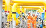 PGN jajaki pemanfaatan gas di Blok Masela.