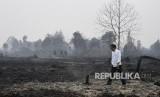 In Picture: Foto Jokowi Tinjau Kebakaran Lahan di Riau
