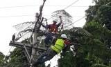 PT. PLN (Persero) melakukan pemulihan infrastruktur kelistrikan di Sentani, Papua. Senin (25/3).