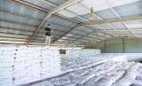PT Pupuk Indonesia (Persero) bersama seluruh anak usahanya yang bergerak di bidang industri Pupuk, memastikan ketersediaan Pupuk Bersubsidi di 34 Provinsi cukup untuk memenuhi kebutuhan selama tiga bulan ke depan.