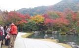 ragam warna dedaunan di musim gugur